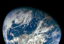 """""""Protejamos nuestras especies"""", es el llamado de la ONU en el Día de la Tierra - Itagüí Hoy"""