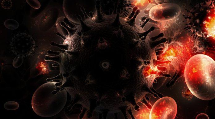 Científicos logran eliminar el virus del VIH en animales vivos - Itagüí Hoy